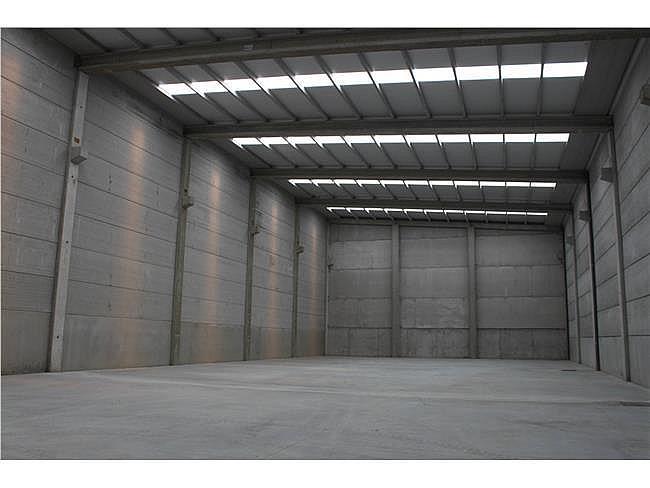 Nave industrial en alquiler en Porriño (O) - 353347001