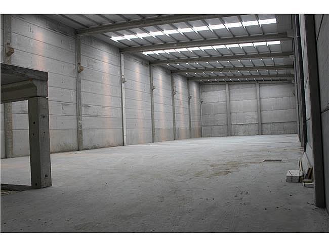 Nave industrial en alquiler en Porriño (O) - 353347007
