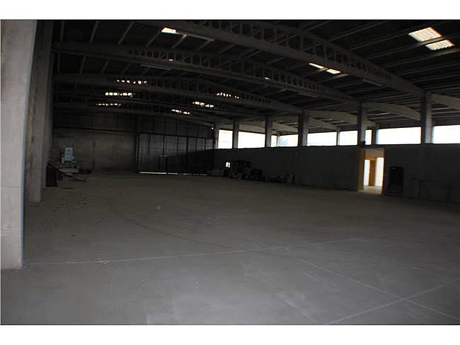 Nave industrial en alquiler en Ponteareas - 371315809