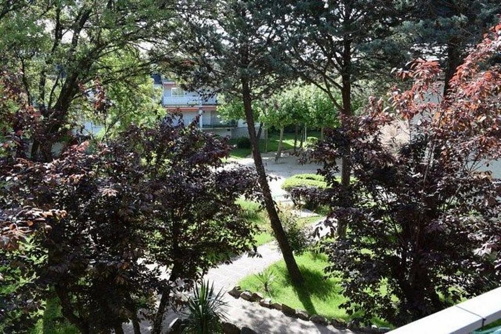 Piso en alquiler en calle De Las Rocas, Alpedrete - 323061936