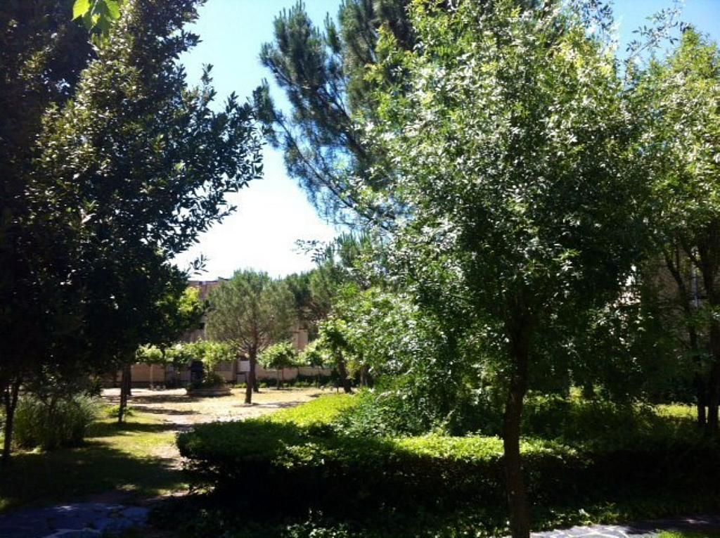 Piso en alquiler en calle Arroyo de Los Sauces, Alpedrete - 353258355