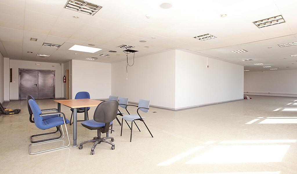 Oficina en alquiler en paseo De la Zona Franca, La Marina de Port en Barcelona - 280325038