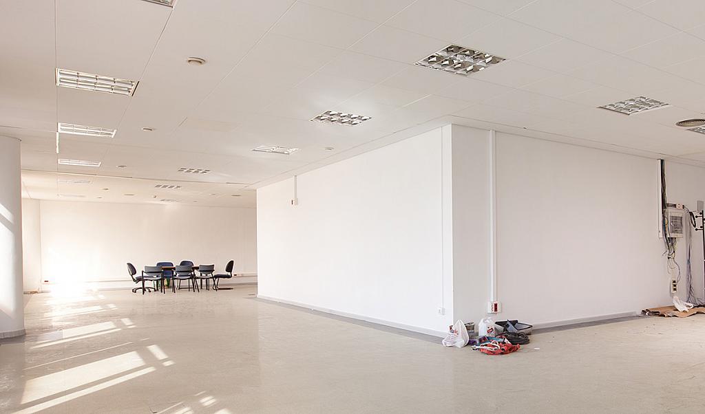 Oficina en alquiler en paseo De la Zona Franca, La Marina de Port en Barcelona - 280325050