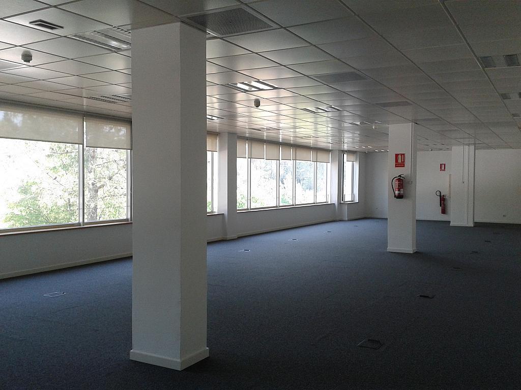 Oficina en alquiler en calle Alcalde Barnils, Centre en Sant Cugat del Vallès - 284407131
