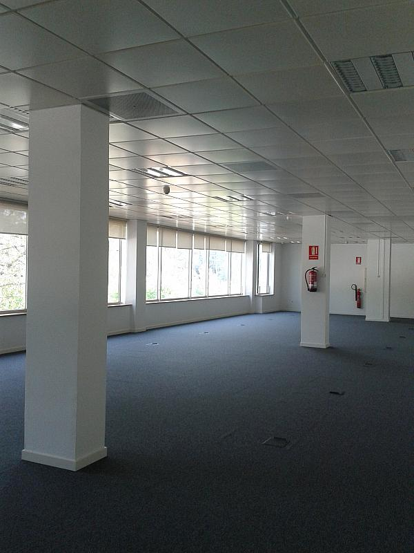 Oficina en alquiler en calle Alcalde Barnils, Centre en Sant Cugat del Vallès - 284407134