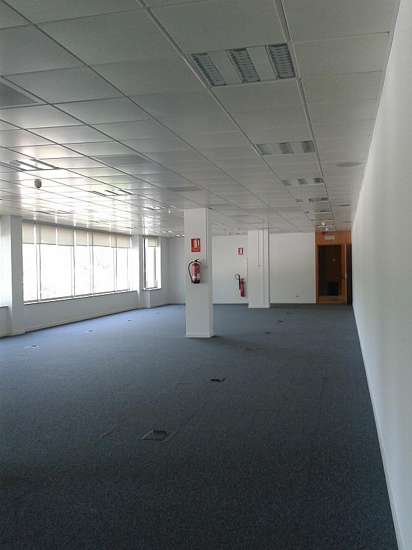 Oficina en alquiler en calle Alcalde Barnils, Centre en Sant Cugat del Vallès - 284407137