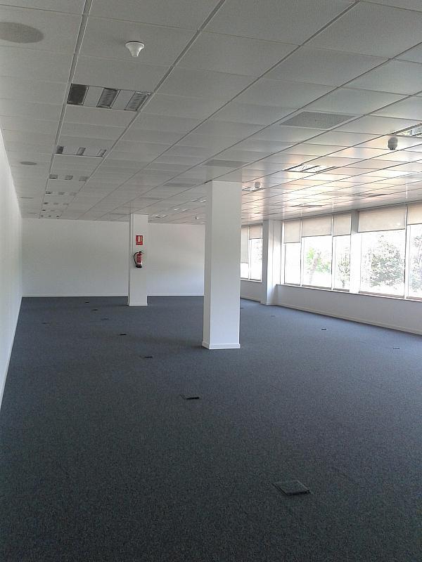 Oficina en alquiler en calle Alcalde Barnils, Centre en Sant Cugat del Vallès - 284407144