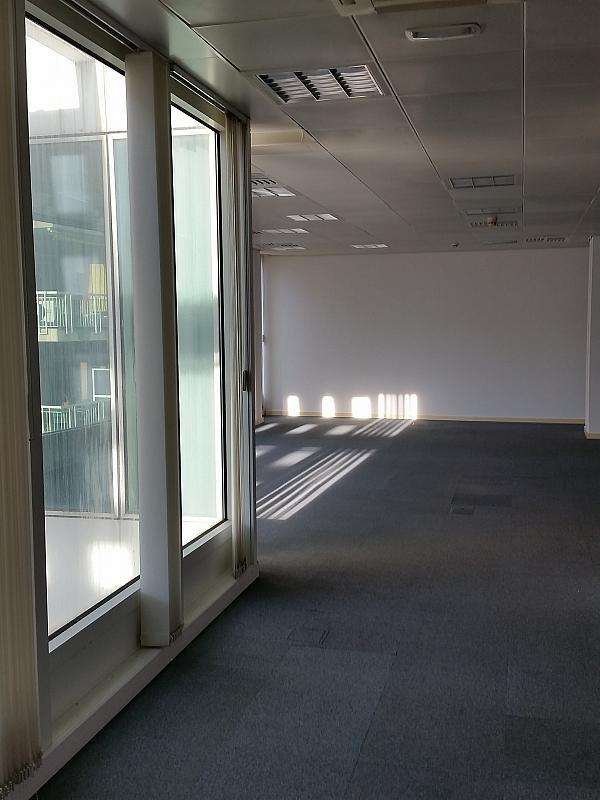 Oficina en alquiler en calle Tarragona, Hostafrancs en Barcelona - 289794815