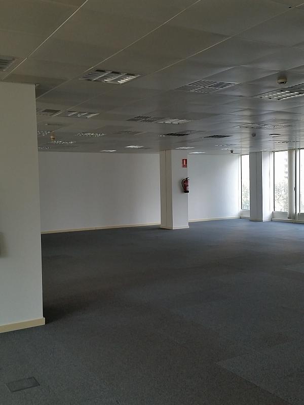 Oficina en alquiler en calle Tarragona, Hostafrancs en Barcelona - 289794818