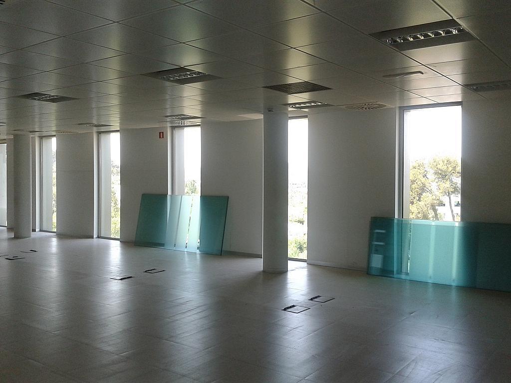 Oficina en alquiler en calle Pau Vila, Volpelleres en Sant Cugat del Vallès - 300937261