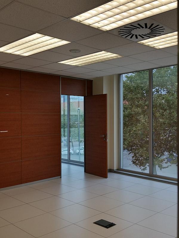 Oficina en alquiler en calle Del Foc, La Marina del Prat Vermell en Barcelona - 332018416