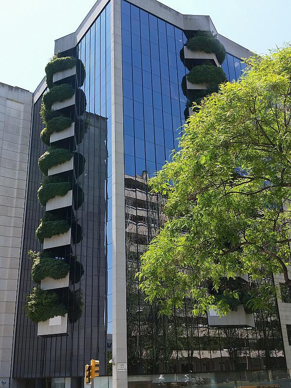 Oficina en alquiler en calle Caravel·la la Niña, Les corts en Barcelona - 355503448