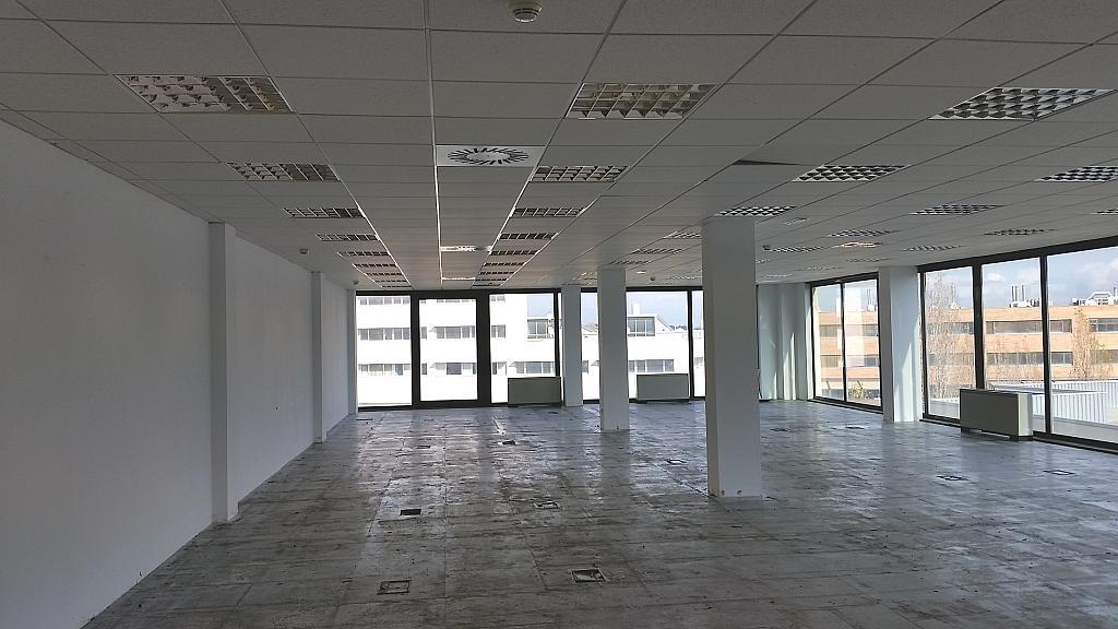 Oficina en alquiler en calle Cerdanyola, Sant Cugat del Vallès - 363131432