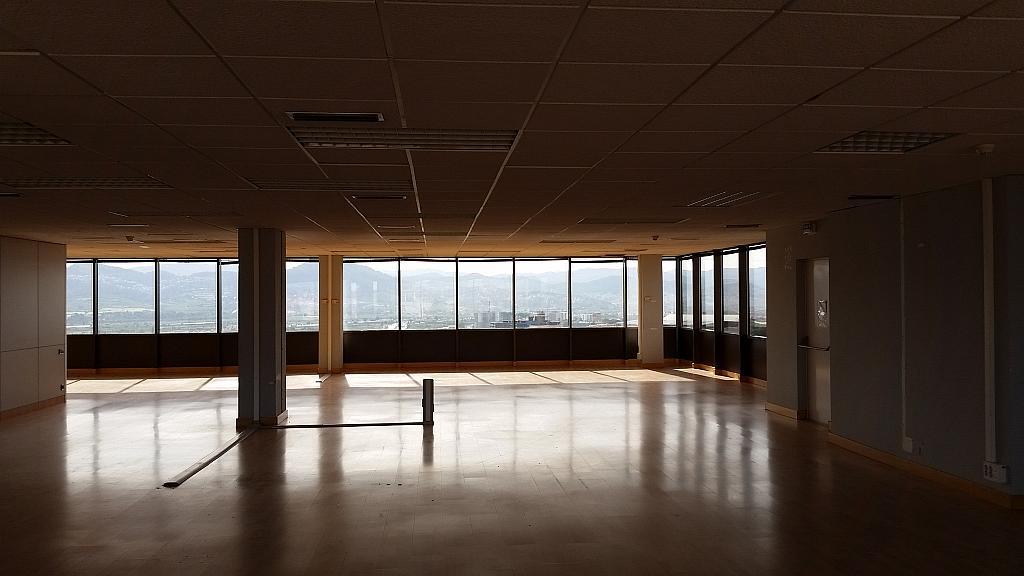 Oficina en alquiler en calle Fructuós Gelabert, Residencial Sant Joan - TV3 en Sant Joan Despí - 363556021