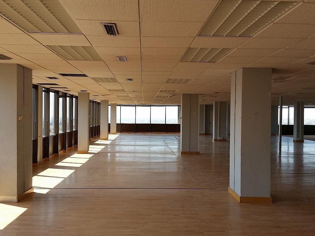 Oficina en alquiler en calle Fructuós Gelabert, Residencial Sant Joan - TV3 en Sant Joan Despí - 363556041