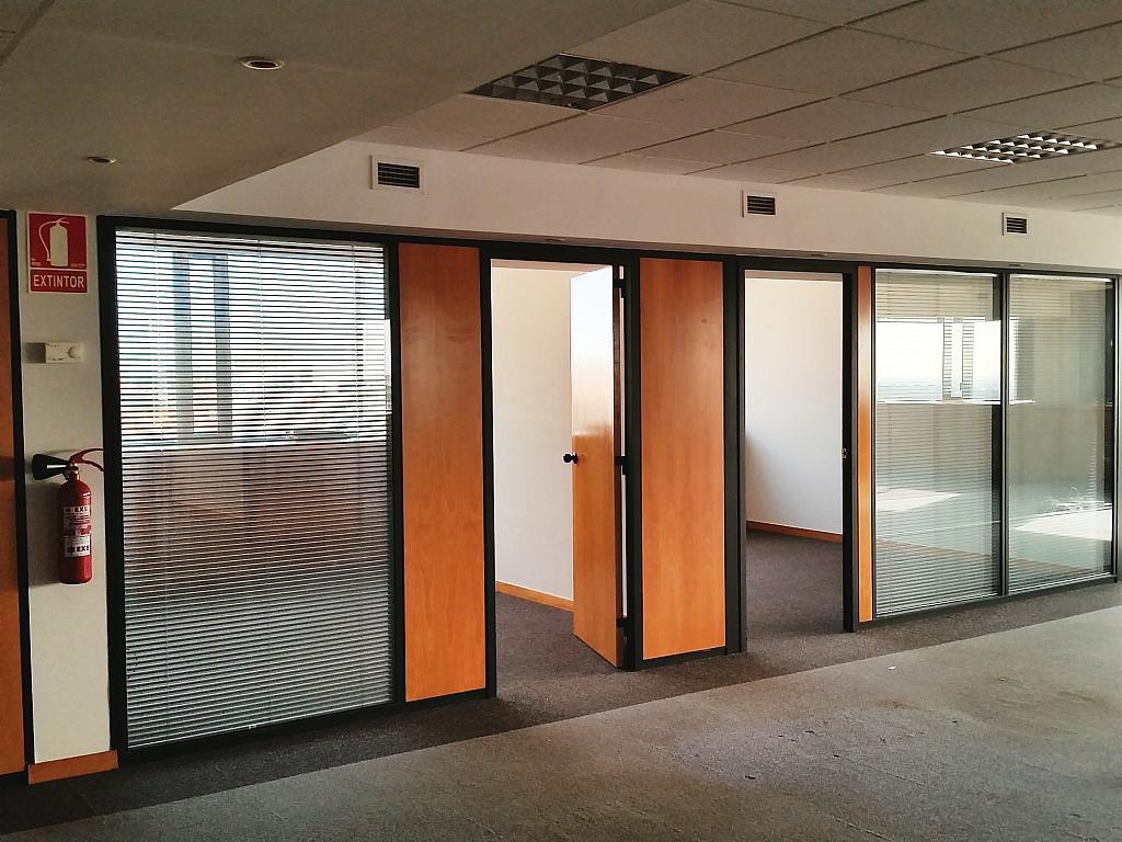 Oficina en alquiler en calle Maria Cristina, Pedralbes en Barcelona - 363557480