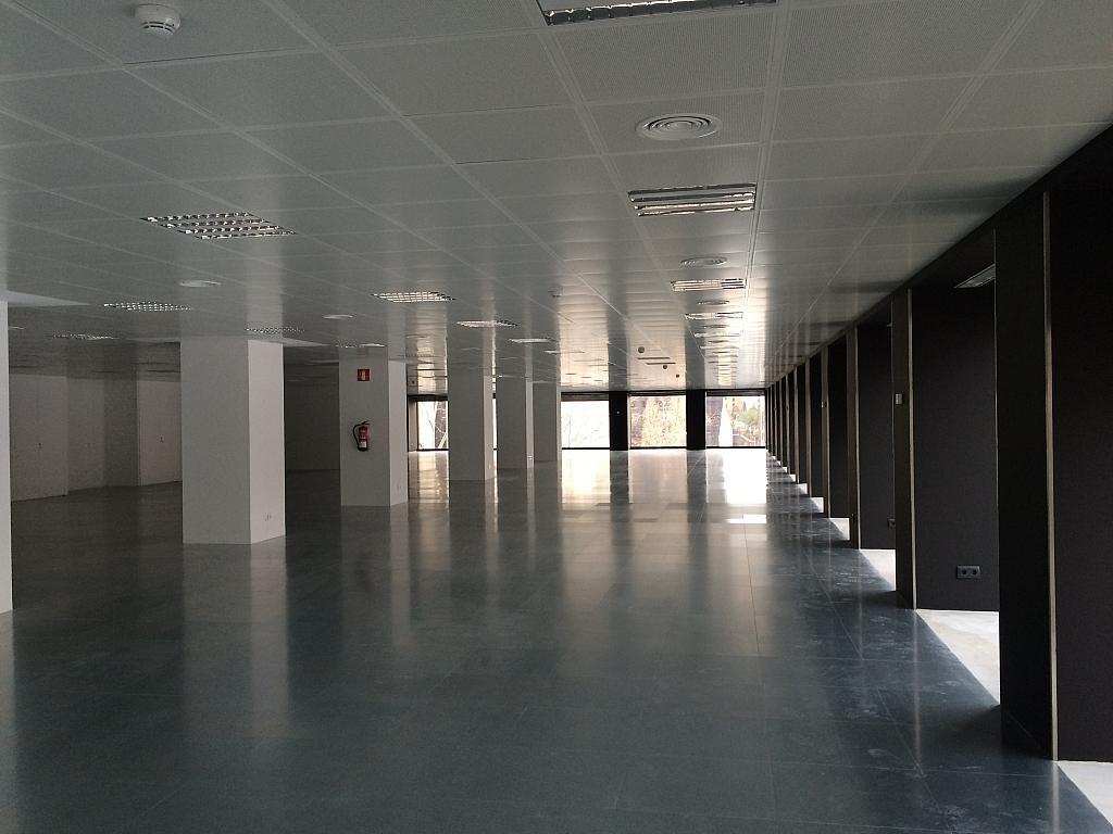 Oficina en alquiler en calle Diagonal, Les corts en Barcelona - 383142342