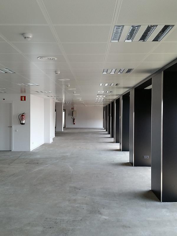 Oficina en alquiler en calle Diagonal, Pedralbes en Barcelona - 202322736
