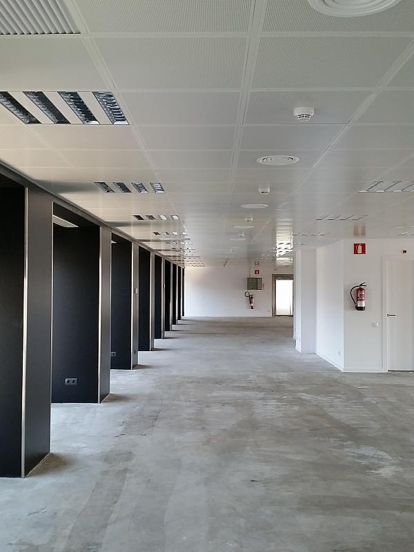 Oficina en alquiler en calle Diagonal, Pedralbes en Barcelona - 202322742