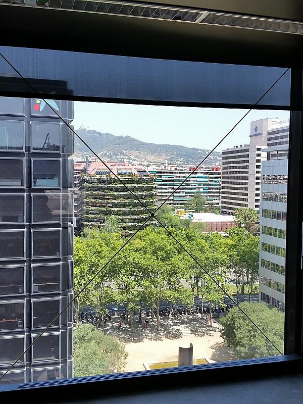 Oficina en alquiler en calle Diagonal, Pedralbes en Barcelona - 202322776