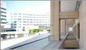 Oficina en alquiler en calle Moll de Barcelona, El Raval en Barcelona - 119473462
