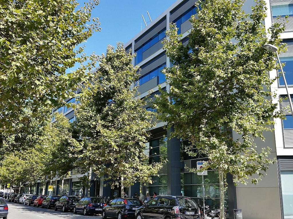 Oficina en alquiler en calle Llacuna, El Poblenou en Barcelona - 209497324