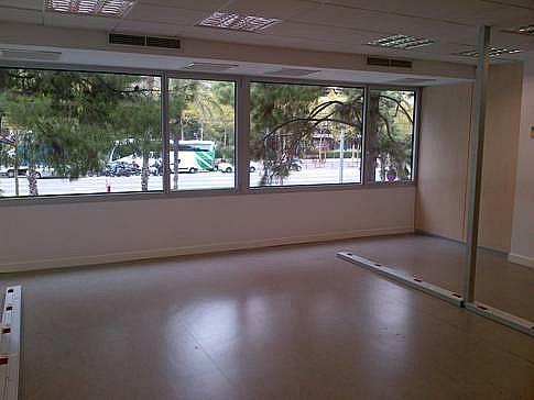 Oficina - Oficina en alquiler en calle Diagonal, Pedralbes en Barcelona - 155978731
