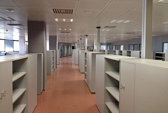 Oficina en alquiler en paseo De la Zona Franca, Zona Franca- Port en Barcelona - 156382868