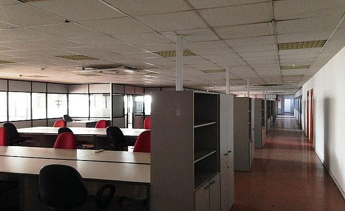 Oficina - Oficina en alquiler en paseo De la Zona Franca, Zona Franca- Port en Barcelona - 156382885