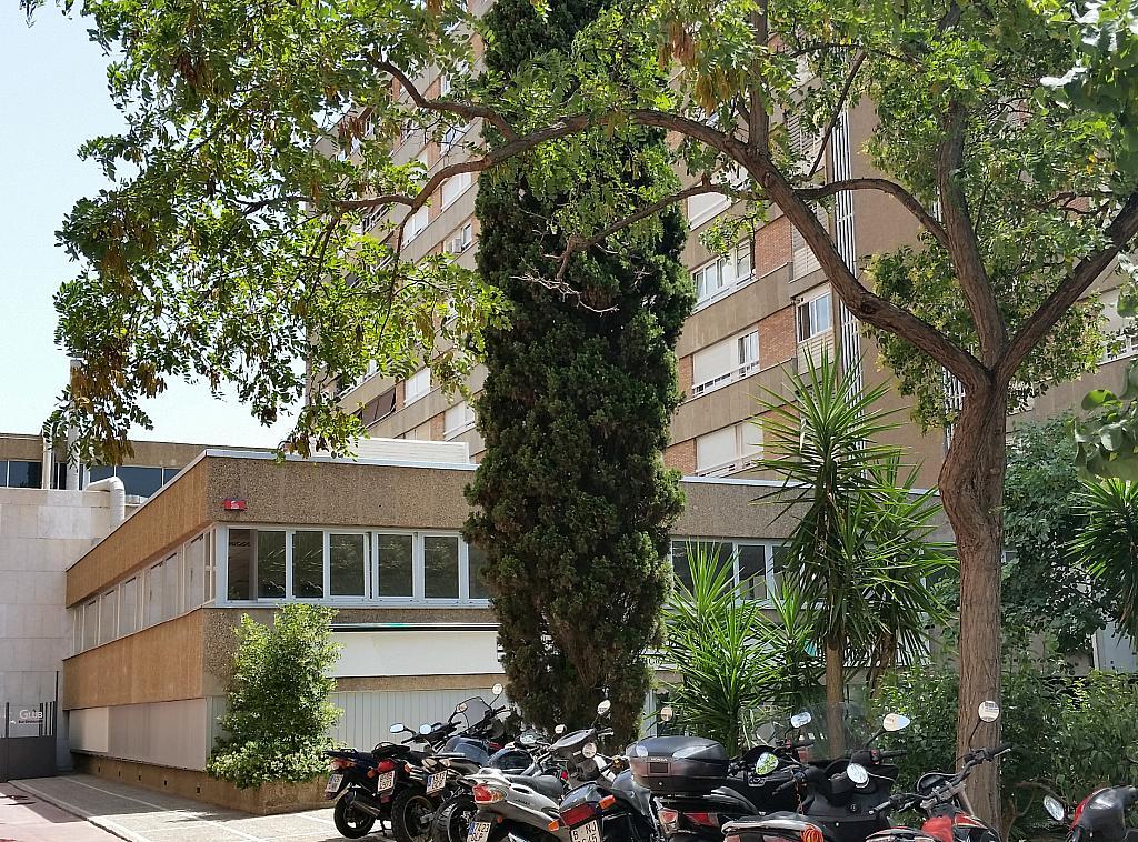 Oficina en alquiler en calle Sabino de Arana, Sant Ramon-La Maternitat en Barcelona - 201690695