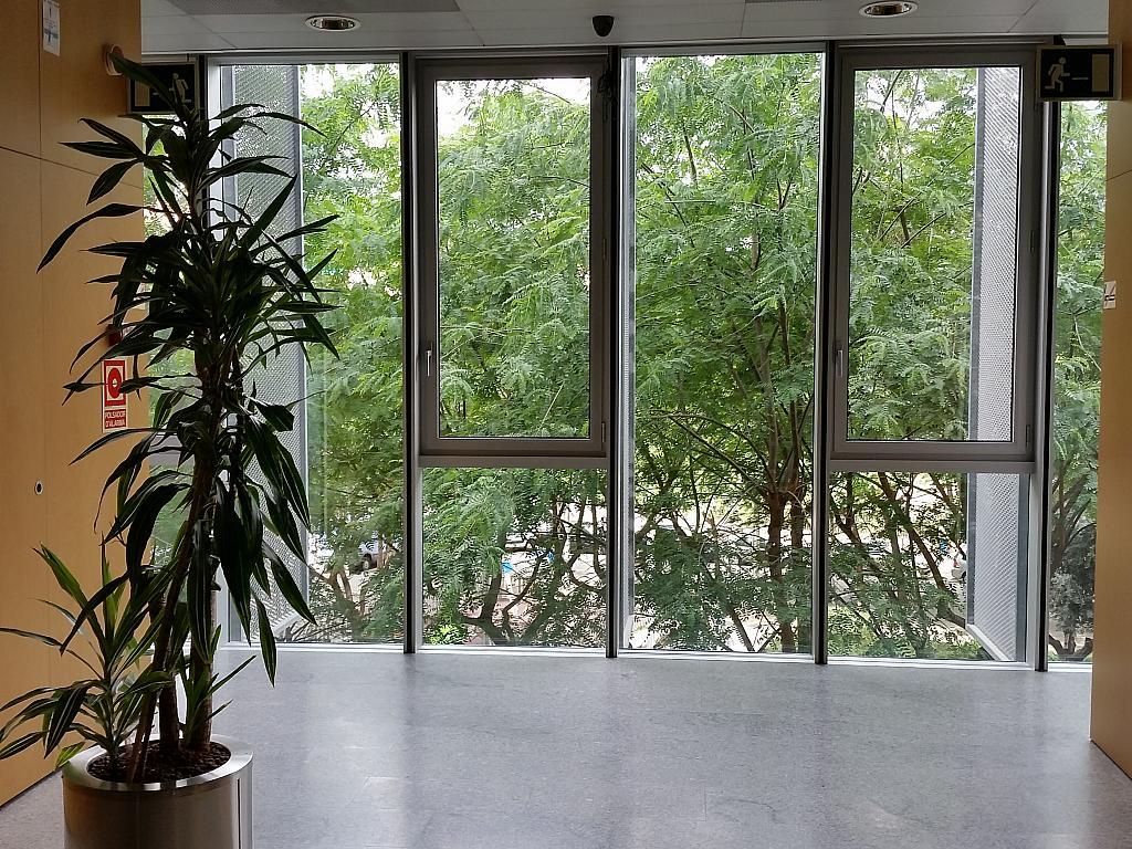 Oficina en alquiler en calle Gran Via de L'hospitalet, Gran Via LH en Hospitalet de Llobregat, L´ - 211604955