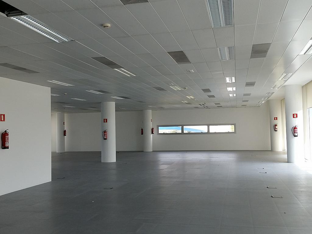 Oficina en alquiler en calle Gran Via de L'hospitalet, Gran Via LH en Hospitalet de Llobregat, L´ - 211604971