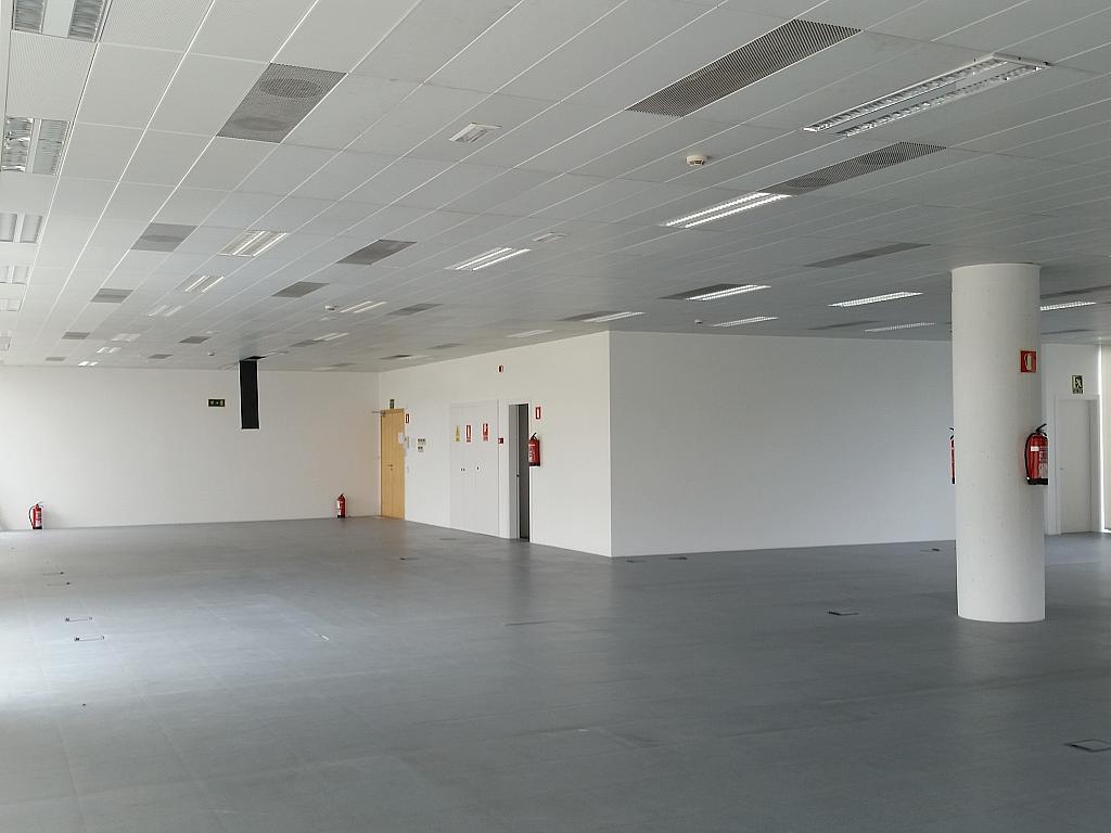Oficina en alquiler en calle Gran Via de L'hospitalet, Gran Via LH en Hospitalet de Llobregat, L´ - 211605021