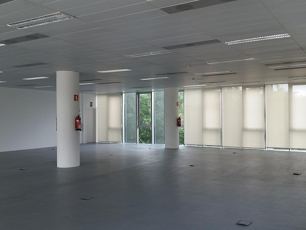 Oficina en alquiler en calle Gran Via de L'hospitalet, Gran Via LH en Hospitalet de Llobregat, L´ - 211605022