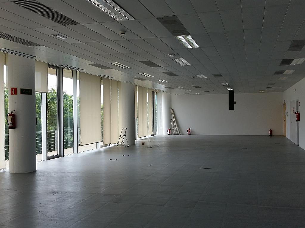Oficina en alquiler en calle Gran Via de L'hospitalet, Gran Via LH en Hospitalet de Llobregat, L´ - 211605027