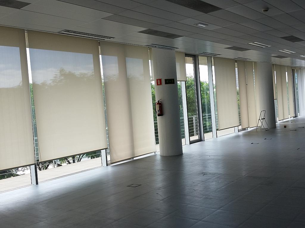 Oficina en alquiler en calle Gran Via de L'hospitalet, Gran Via LH en Hospitalet de Llobregat, L´ - 211605028