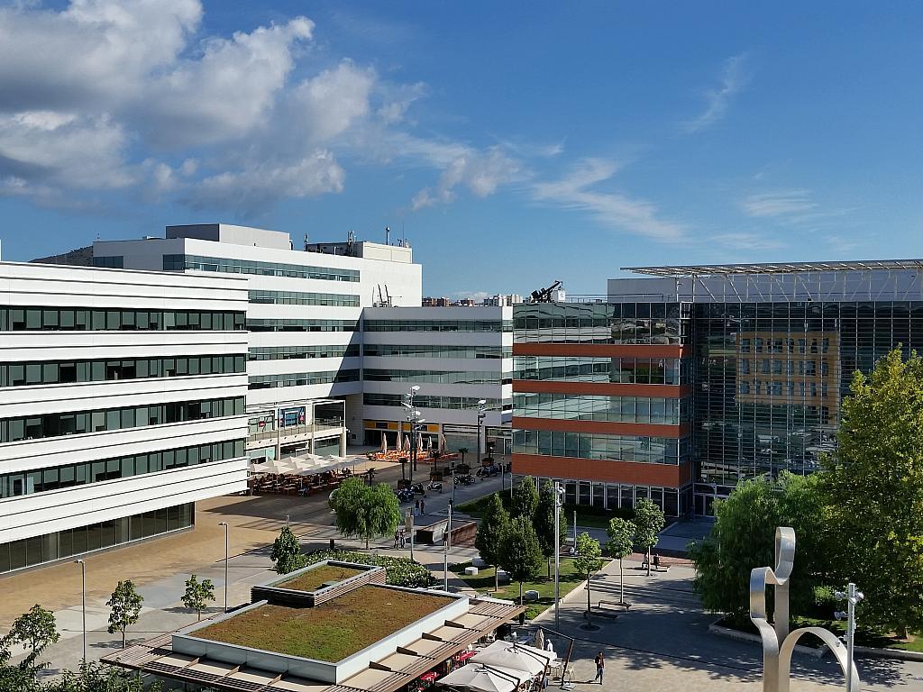 Oficina en alquiler en calle De la Pau, Almeda en Cornellà de Llobregat - 213040754