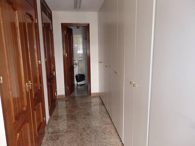Foto - Local comercial en alquiler en calle Asilo Pisos Azules, Centro (Paseo Germanías - Asilo - Pla) en Elche/Elx - 290602147