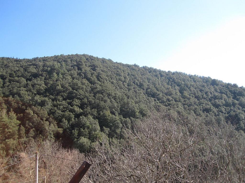 Casa rural en alquiler en Vall de Bianya, la - 332654458