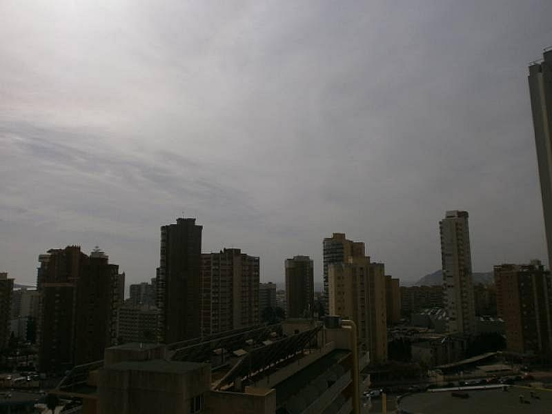 Foto - Apartamento en venta en Levante en Benidorm - 249820911