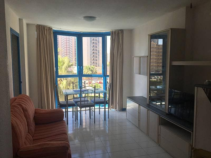 Foto - Apartamento en alquiler en Poniente en Benidorm - 285089870