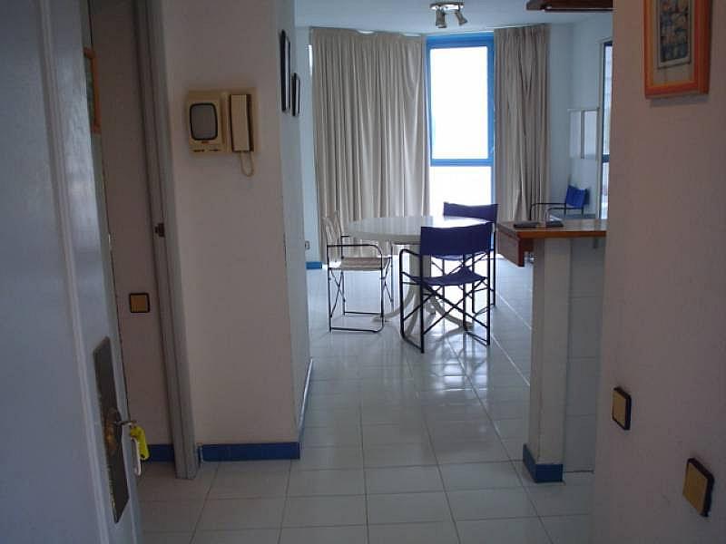 Foto - Apartamento en alquiler en Poniente en Benidorm - 285089873