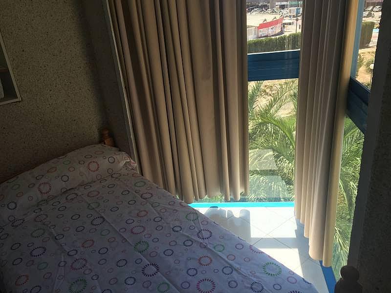 Foto - Apartamento en alquiler en Poniente en Benidorm - 285089894