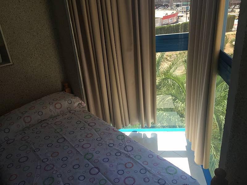 Foto - Apartamento en alquiler en Poniente en Benidorm - 285089900