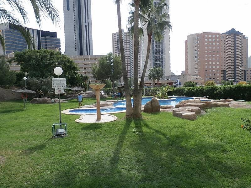 Foto - Apartamento en alquiler en Poniente en Benidorm - 285089903