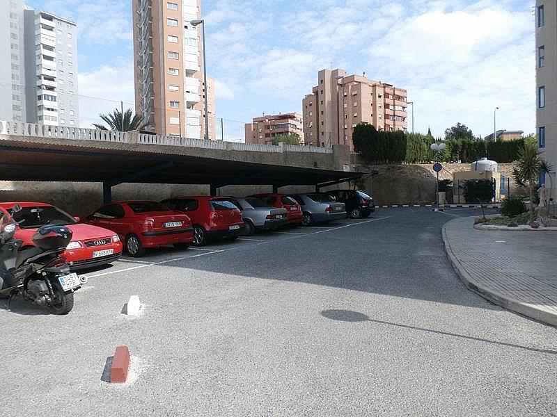 Foto - Apartamento en alquiler en Poniente en Benidorm - 285089909