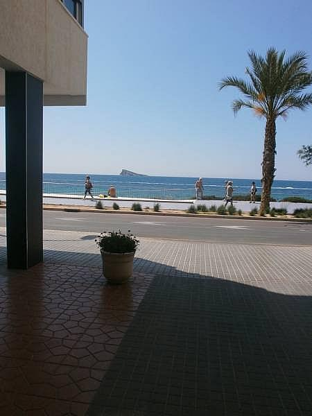 Foto - Apartamento en venta en Poniente en Benidorm - 280571079