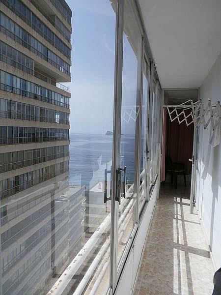 Foto - Apartamento en venta en Poniente en Benidorm - 280571103