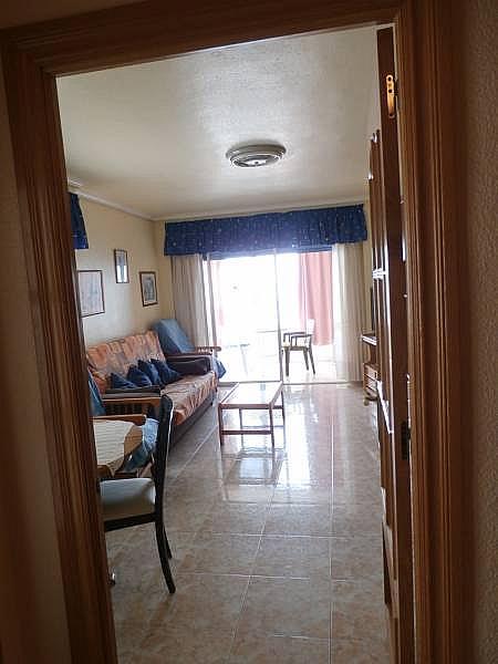 Foto - Apartamento en venta en Poniente en Benidorm - 280571112