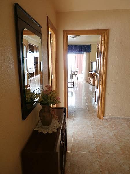 Foto - Apartamento en venta en Poniente en Benidorm - 280571127